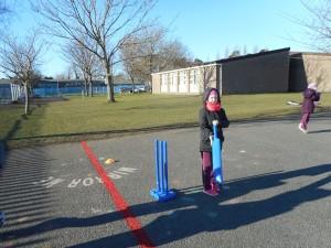 Cricket 056